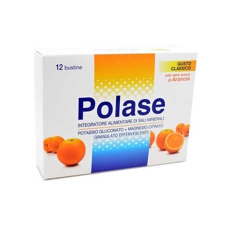 POLASE ARANC 12 BUST