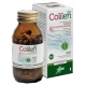 COLILEN IBS 96 OPR